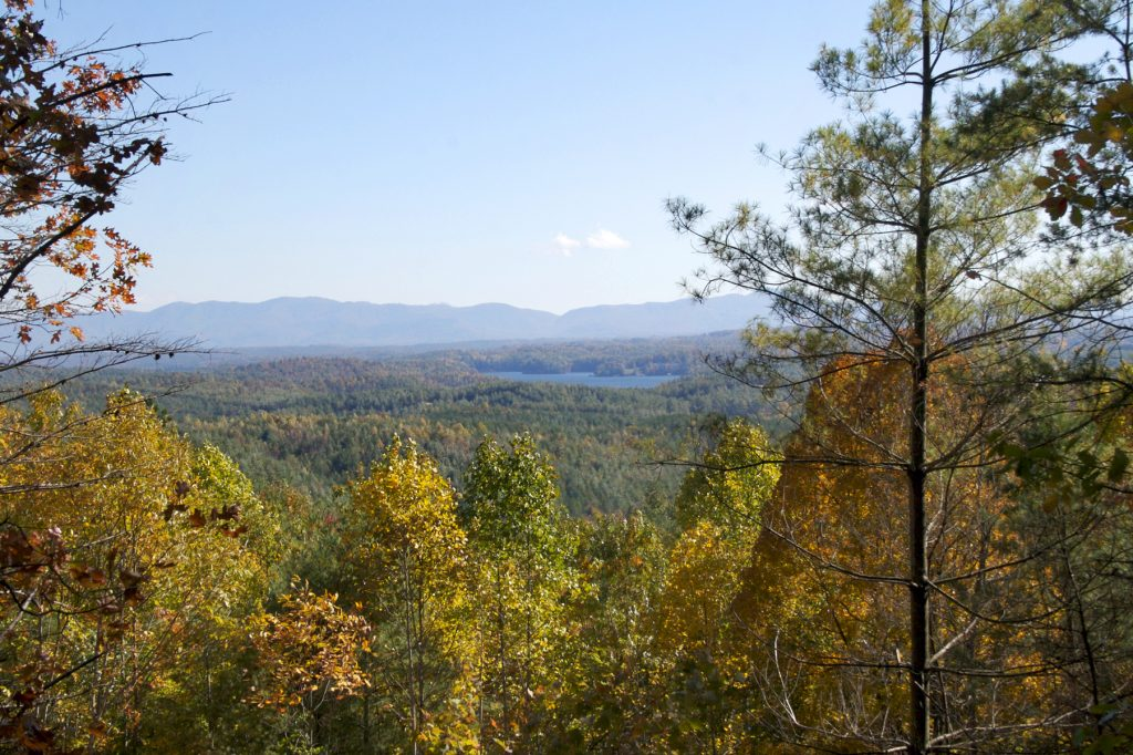 View of Lake James through the trees